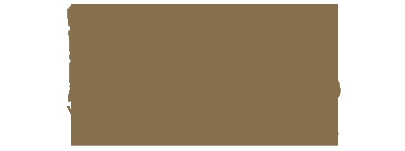 HistoryLab - Vivere la Storia