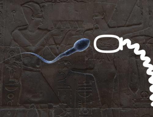 Antichi egizi e spermatozoi