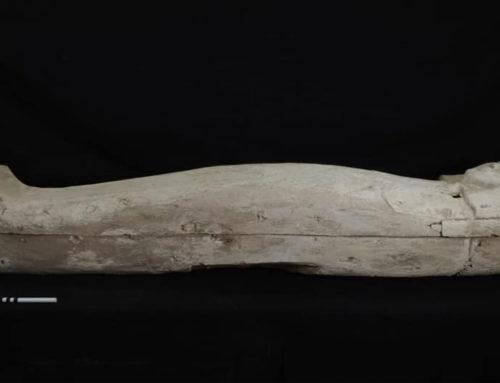 Sarcofago della XVII Dinastia scoperto a Luxor