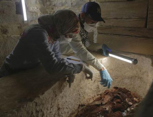 Mummie, misteri nelle piramidi