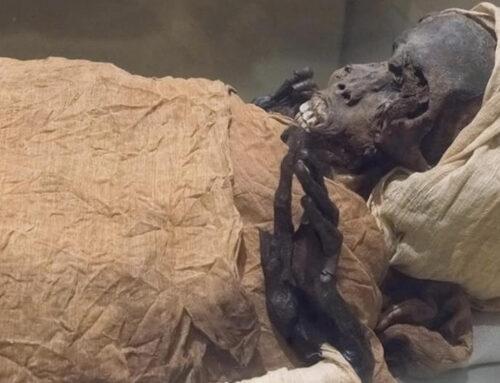 Nuove indagini sulla mummia di Seqenenra Taa rivelano le circostanze della sua morte